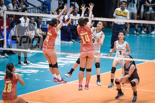 Adamson Lady Falcons turn back Power Smashers to snap two-game skid in PVL Open