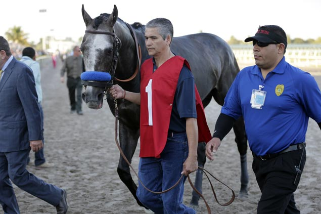 Accelerate grabs spotlight as heavy favorite Arrogate winds up third at Del Mar