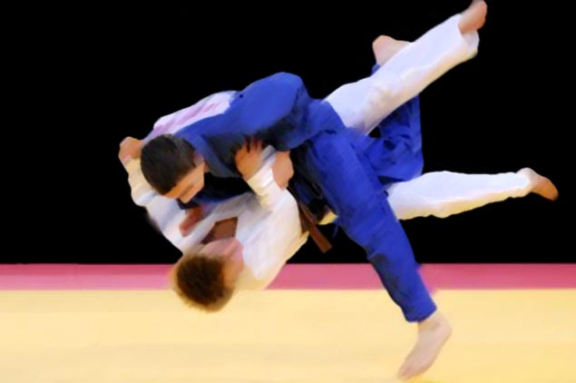 Baylon eyes comeback in judo's newest form