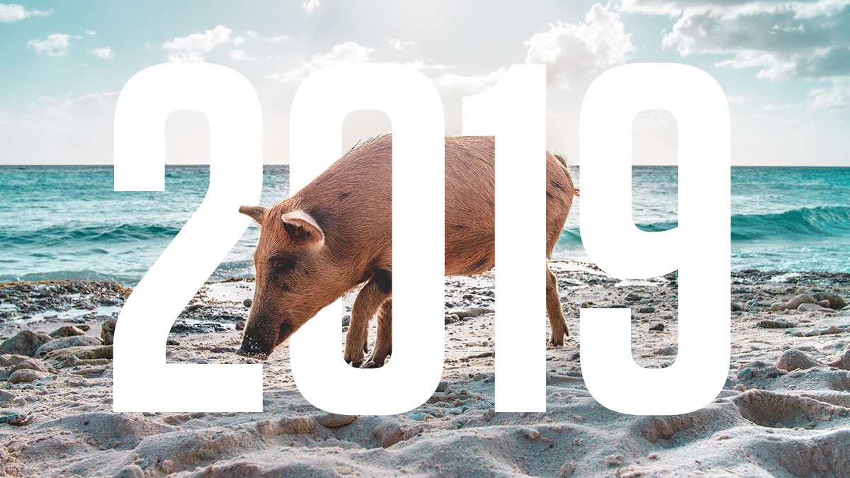 What does the Year of the Pig have in store for those under