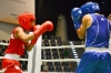 Win some, lose some for PH boxers as Rogen Ladon advances but Ian Clark Bautista falls