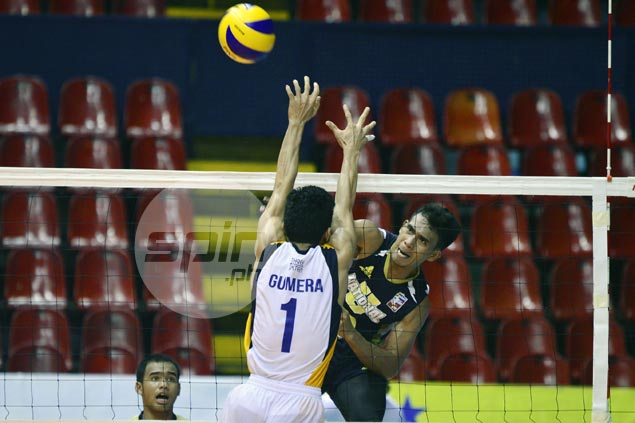 NU Bulldogs, UP Maroons score contrasting wins in Spikers Turf