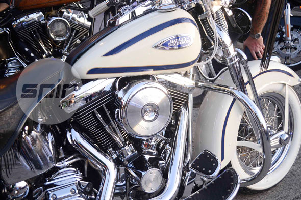 Roar of Harley Davidson bikes music to enthusiasts ears at Manila HOG Rally