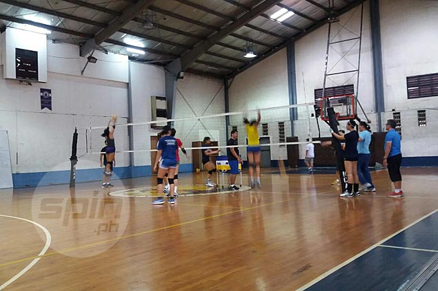 Seven players show up for national women's volley team practice two days after zero attendance