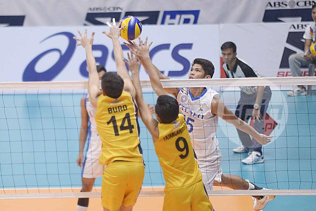 Blue Eagles fight back from a set down to eliminate Tiger Spikers and gain PVL finals against Tamaraws