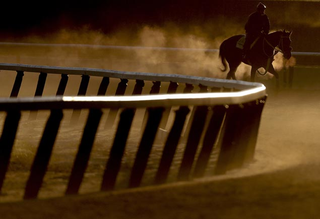 Around 30 thoroughbreds perish as wildfire hits elite training center for racehorses