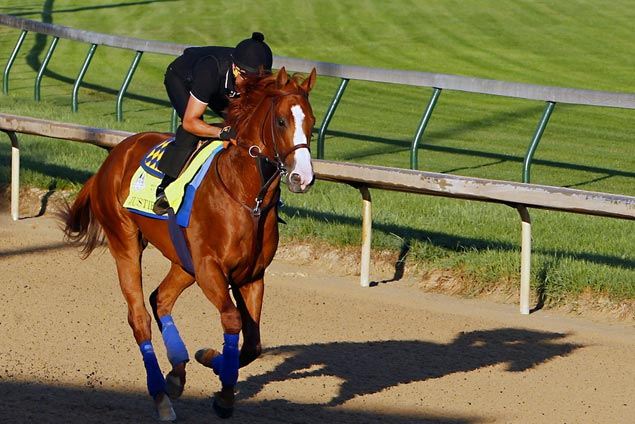 Baffert sees similarities between Justify, American Pharoah but Espinosa won't put the two in the same class
