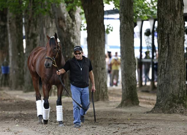Still no decision on racing plans although American Pharoah looks fine after stunning loss at Saratoga