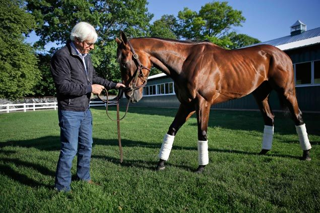 With newfound legacy to protect, AmericanPharoah handlers vow to properly prepare for next race