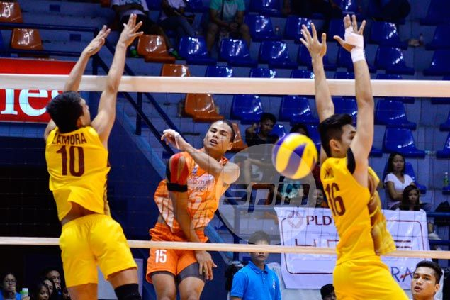 PLDT Home defeats Cagayan Valley to rule inaugural Spikers' Turf