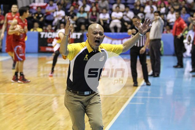 Referees' decisions on what's a foul, what's not leave Guiao, Austria in state of confusion